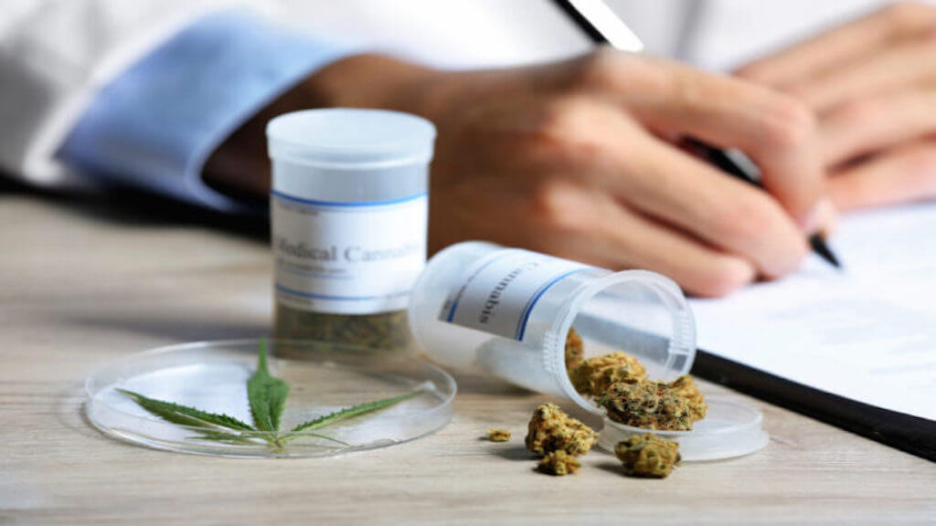 Medical Cannabis Over Traditional Alternatives for Pain