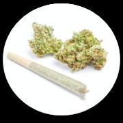 North Medical marijuana preroll